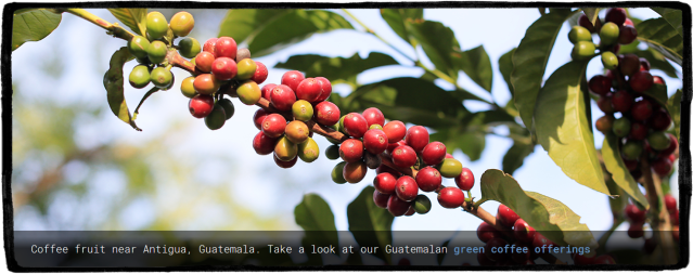 Screenshot_2019-07-20 Sweet Maria's Home Coffee Roasting